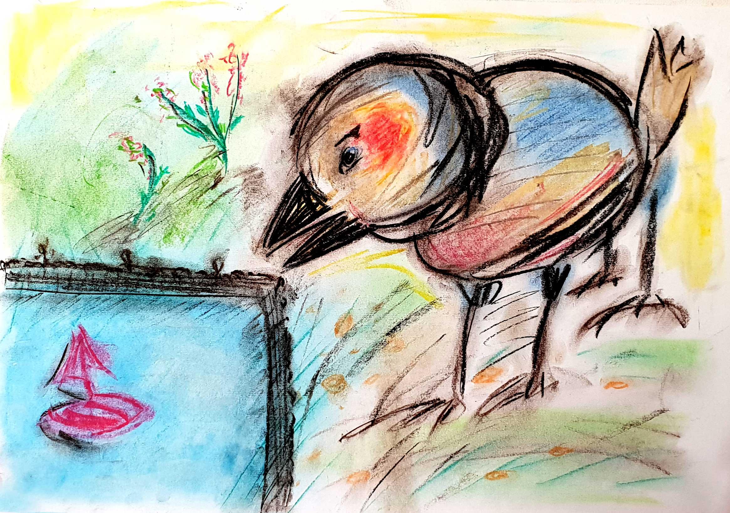 CuriousBird