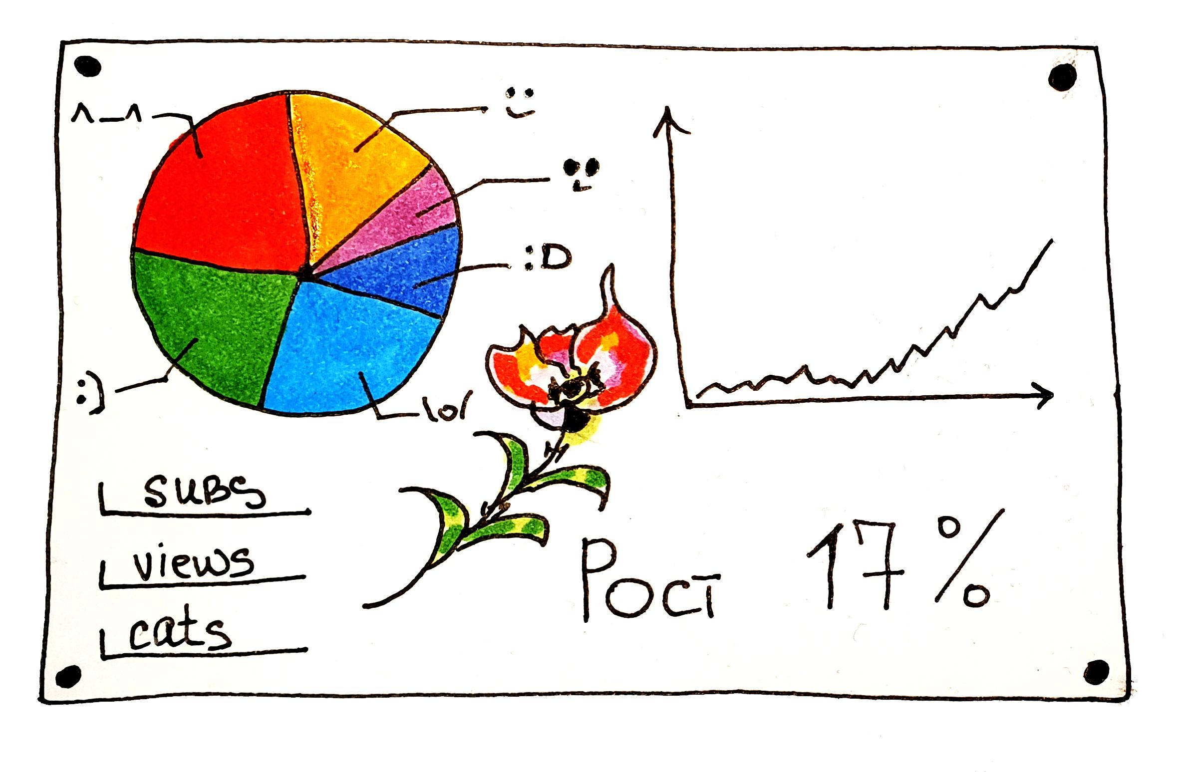 44youtube-analytics